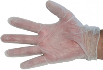 "10"" Disposable Vinyl Glove - Size L"